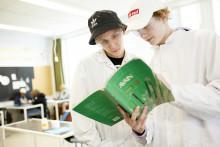 Kaksi poikaa tutkii kirjaa