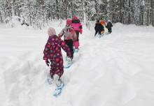 Kuusi lasta kulkee jonossa lumikengät jalassa metsässä / Satu Jokilahti