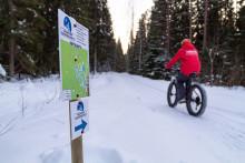 Pyöräilijä Laajavuoren talvipyöräilyreitillä