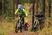 Miehet ajamassa Jyväskylän kiertävällä maastopyörä- ja retkeilyreitillä metsässä