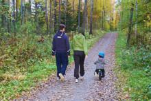 lapsi ja kaksi aikuista ulkoilemassa metsätiellä